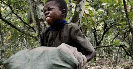 6 multinazionali coinvolte nello schiavismo e nello sfruttamento del lavoro minorile