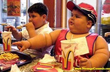 Capannori, un nuovo McDonald a Rifiuti Zero?