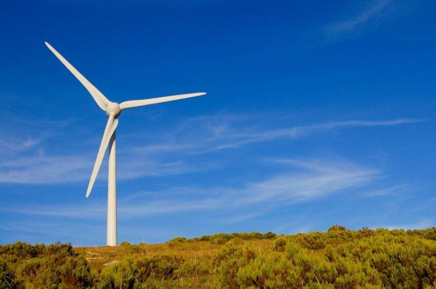 Rinnovavbili: per la prima volta in Europa battoni i combustibili fossili